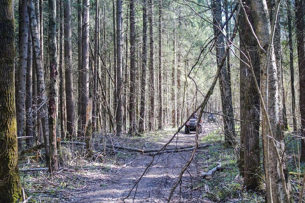 atv bosque