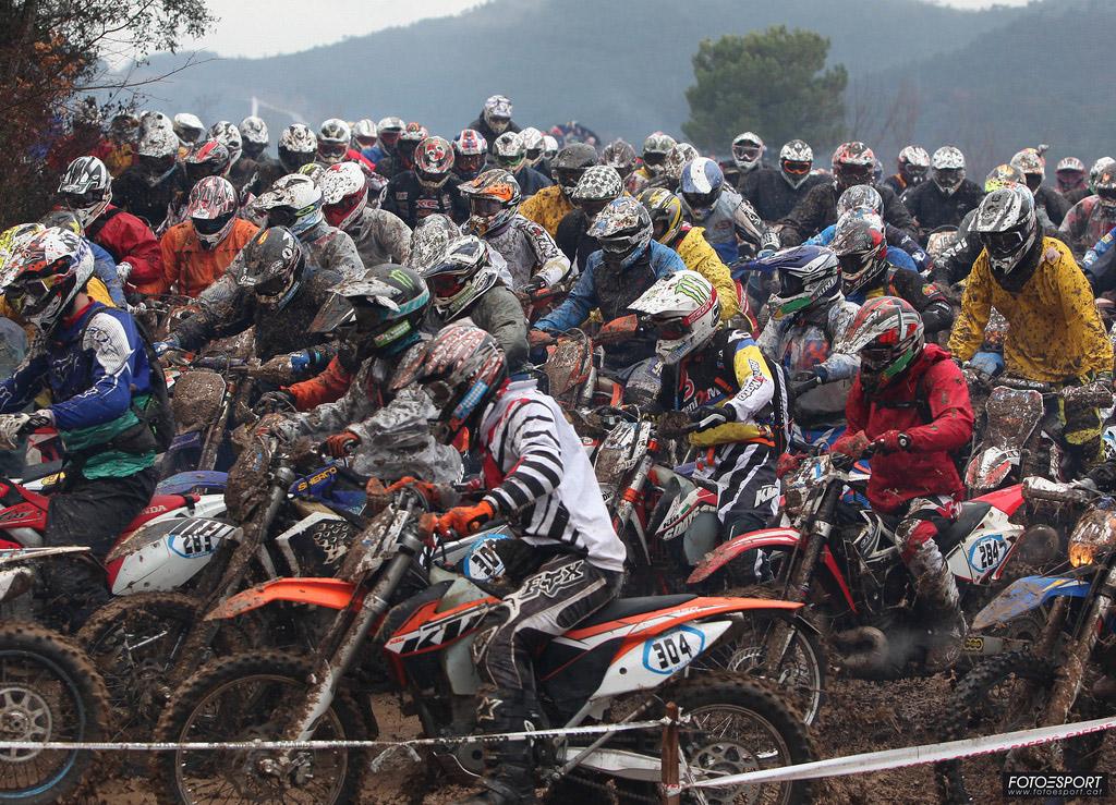 Bassella Race 1 2014