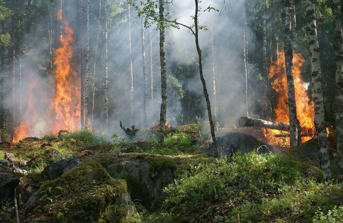 Incendio: qué hacer si nuestra moto o coche comienza a arder