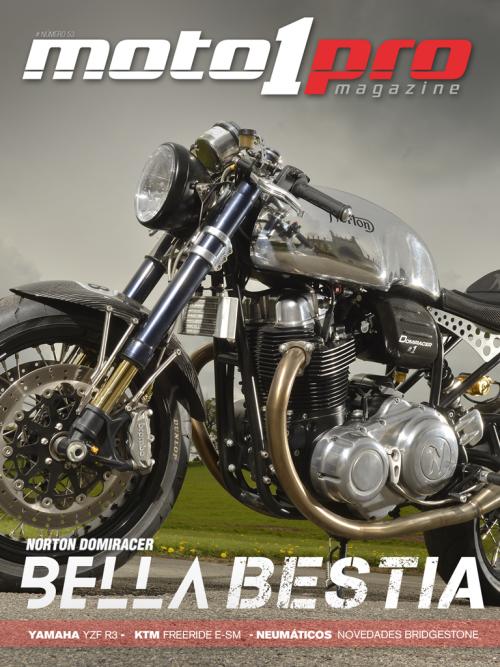 Moto1Pro 53